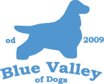 Blue Valley of dogs
